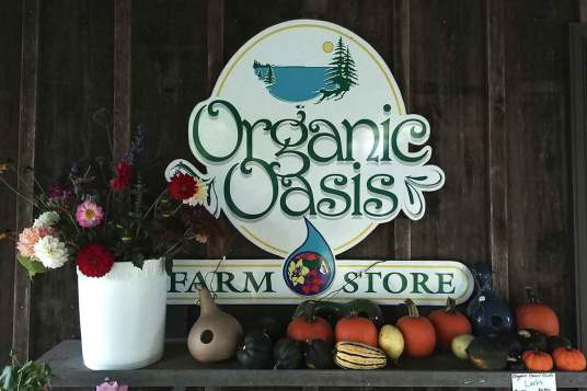 Organic Oasis farm store In Perth County is a great place to shop