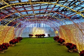 Christmas-in-Halifax-Glow-nova-scotia