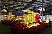 Christmas-lights-Display-airplane-Halifax