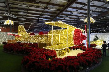 Christmas-lights-Display-airplane-Halifax