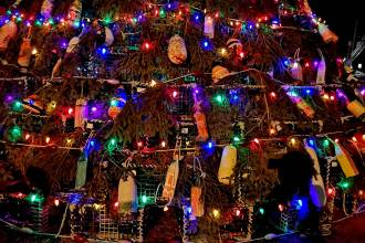 Christmas-tree-lobster-traps-nova-scotia