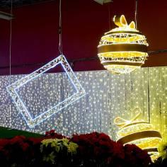 christmas-lights-halifax-glow-roguetrippers