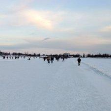 Dow's Lake Skating rink