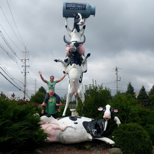 Sault Ste Marie has some Quirky roadside attractions - like the COWS