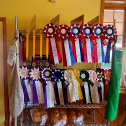 At Doo Doo's Bakery in BailieBoro you will see many of her awards for her butter tarts.