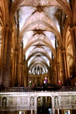 roguestrippers-visit-barcelona-cathedral-gothic-quarter