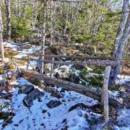 Halifax area Hiking Trail Musquodoboit Trailways Log bridge