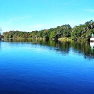 Blue Springs State Park is a short drive from Orlando, Florida