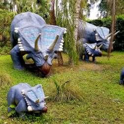 Triceratops-Family-Dinosaur-World-Orlando-Day-Trips