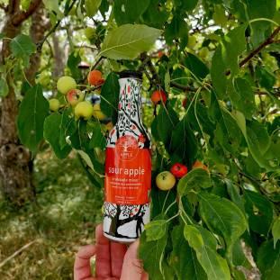 crabapples-cocktails-orchard-tour