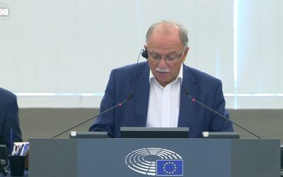 European Parliament (EP)  is concerned about the Rohingya crisis