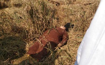 A woman dead body was found in kutupalong's paddy field