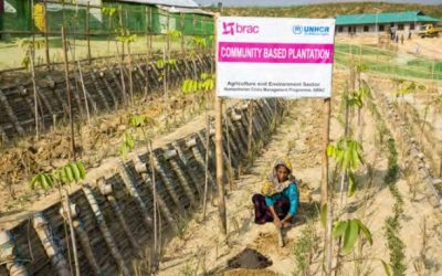Rohingya Refugee Response – Bangladesh Factsheet – Energy & Environment (April 2021)