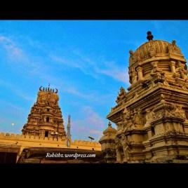 Aprameya temple, channa (2)