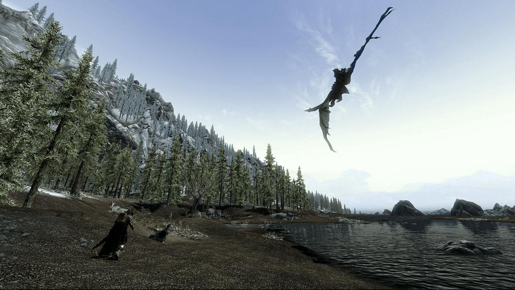 Dragons fly in Skyrim's sky!