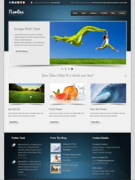 Business Template 12