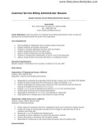 Customer Service Resume Format 4