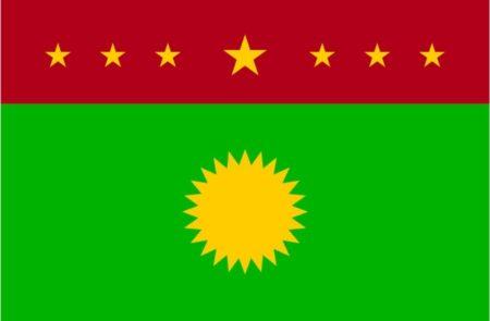majlis-idara-thaatiya-full-flag-with-7-stars-correct-version-450x295