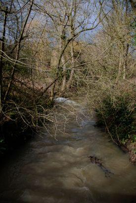 Pudding Dyke meets Anston Brook
