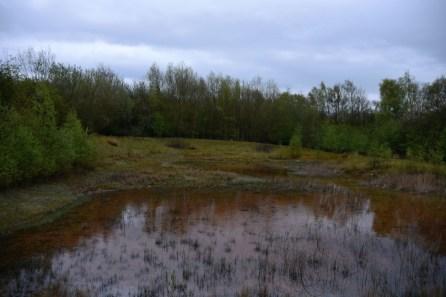 Settling pond