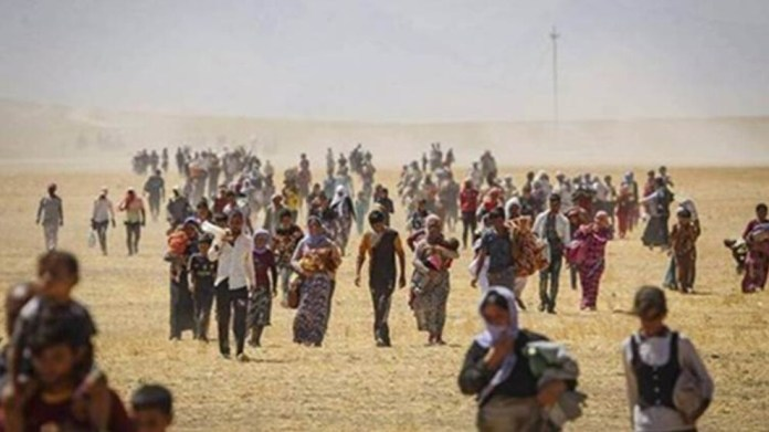 La Fondation Maat a soumis une déclaration écrite concernant Afrin et Shengal à la 46e session du Conseil des Droits de l'Homme de l'ONU.