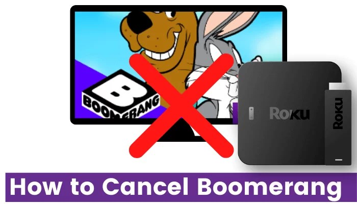 How to Cancel Boomerang Subscription on Roku