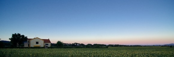 Chiesina con campo di girasoli