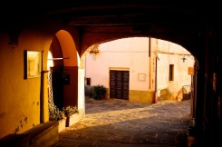 Golden hour in Montepescali