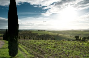 Val D'Orcia 2013 23