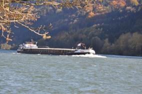 HERBST_Roland Wegerer_Along the Danube_12