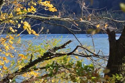HERBST_Roland Wegerer_Along the Danube_15