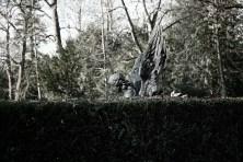 63-friedhof-melaten