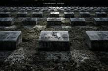 97-suedfriedhof-koeln