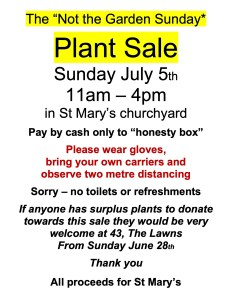 The 'Not the garden Sunday' Plant Sale