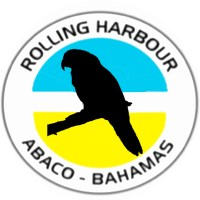 ABACO PARROTS - CONSERVATION & ANTI-PREDATION PROGRAMS BREED SUCCESS...
