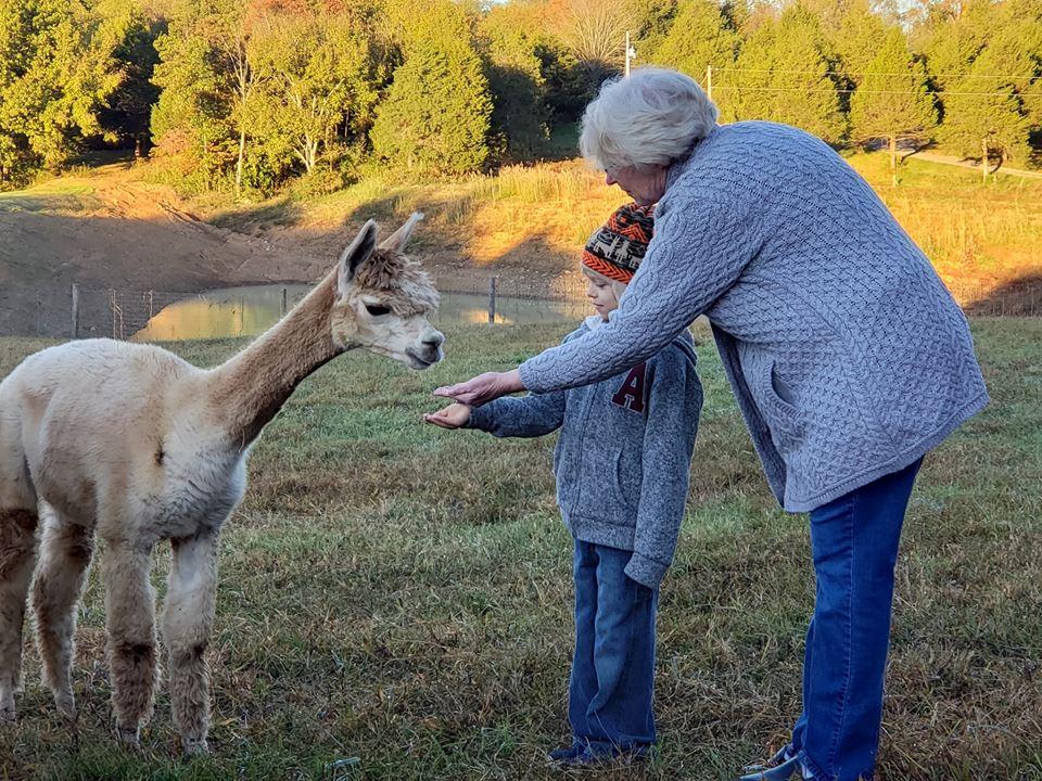 Photo Shoots - Rolling Oak Alpaca Ranch
