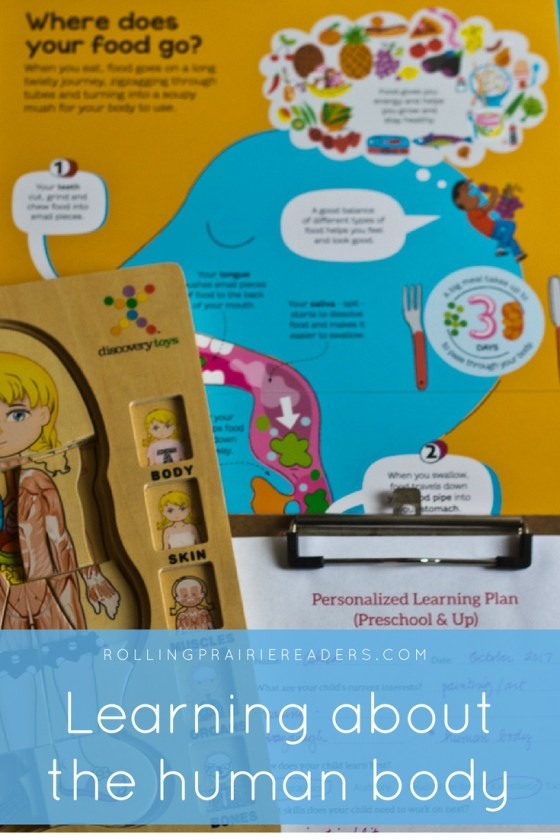 Fun ways to learn about the human body!   learning at home, preschool at home, human anatomy activities for kids