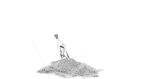 720x405-24.-Donnie-Trumpet-and-the-Social-Experiment,-Surf
