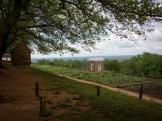 Monticello-9