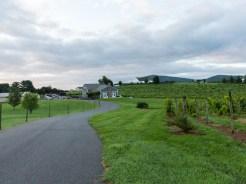 Whitebarrel Winery-3