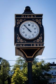 digby-ns-6