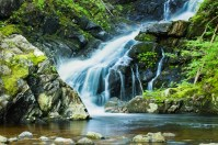McIntosh Brook Waterfall
