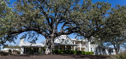 Austin - L.B. Johnson National Historic Site-9684