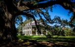 New Orleans - Houmas House Plantation_9550-80