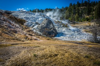 Yellowstone-Mammoth Hot Springs-7494
