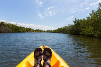 Lover's Key State Park-Kayaking_9357