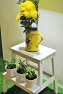 Flowers Decor - Herbaline. Sojourn Guest House
