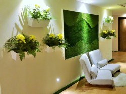 Relaxing Zone- Herbaline. Sojourn Guest House