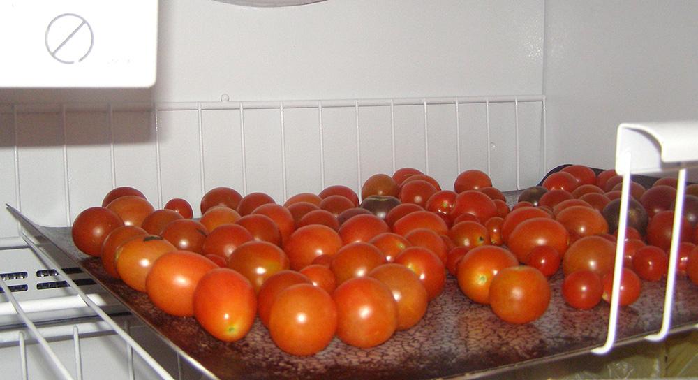 Too Many Cherry Tomatoes?