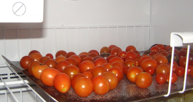 Too Many Cherry Tomatoes?